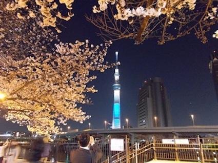 m_2018.3.26-sumidagawasakuraB-cf56f.jpg